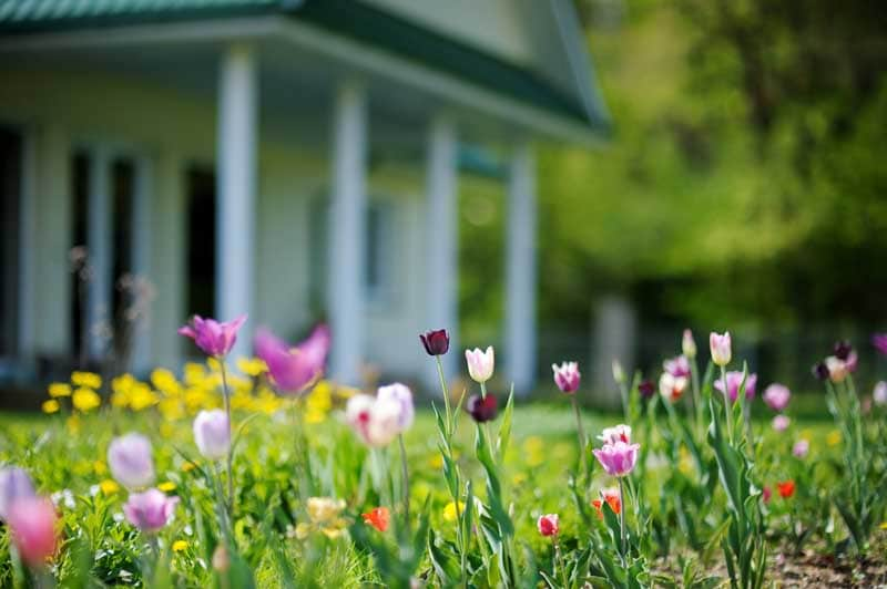 Add spring color outside with flowers and shutters.